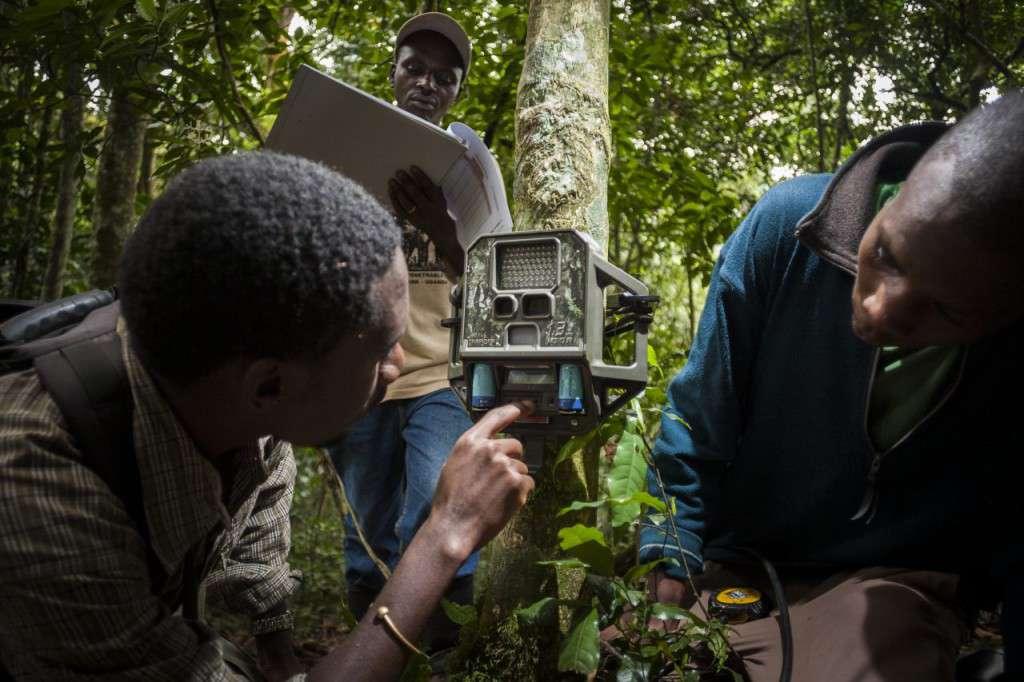 Installation einer Kamera in Uganda.